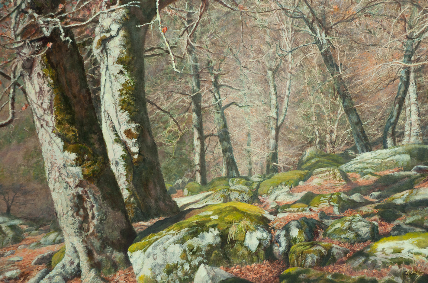 Painting Beech forest Espitau Pyrenees
