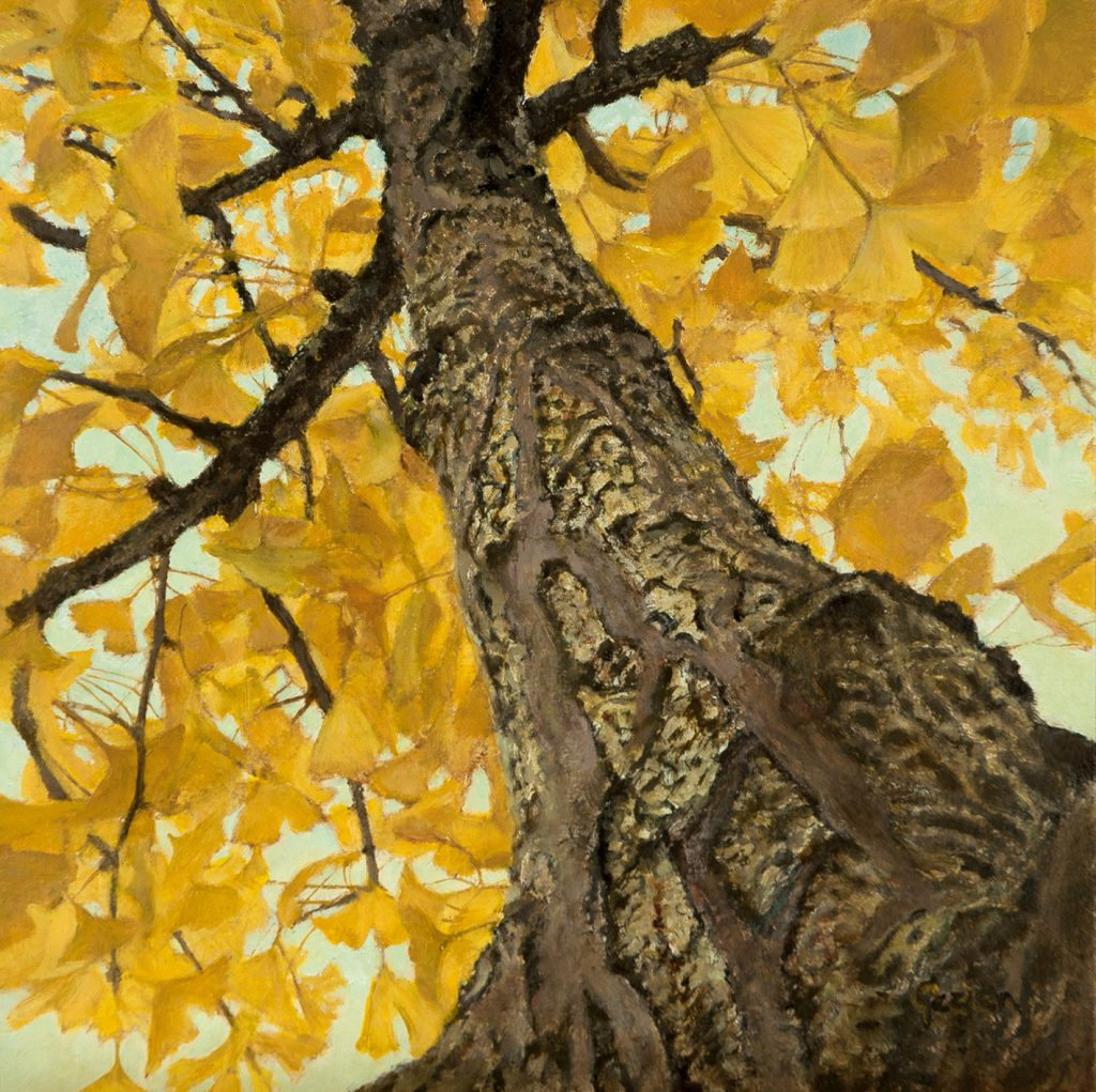 Gezien van de Riet Our Gingko in Autumn Tempera-oil-panel