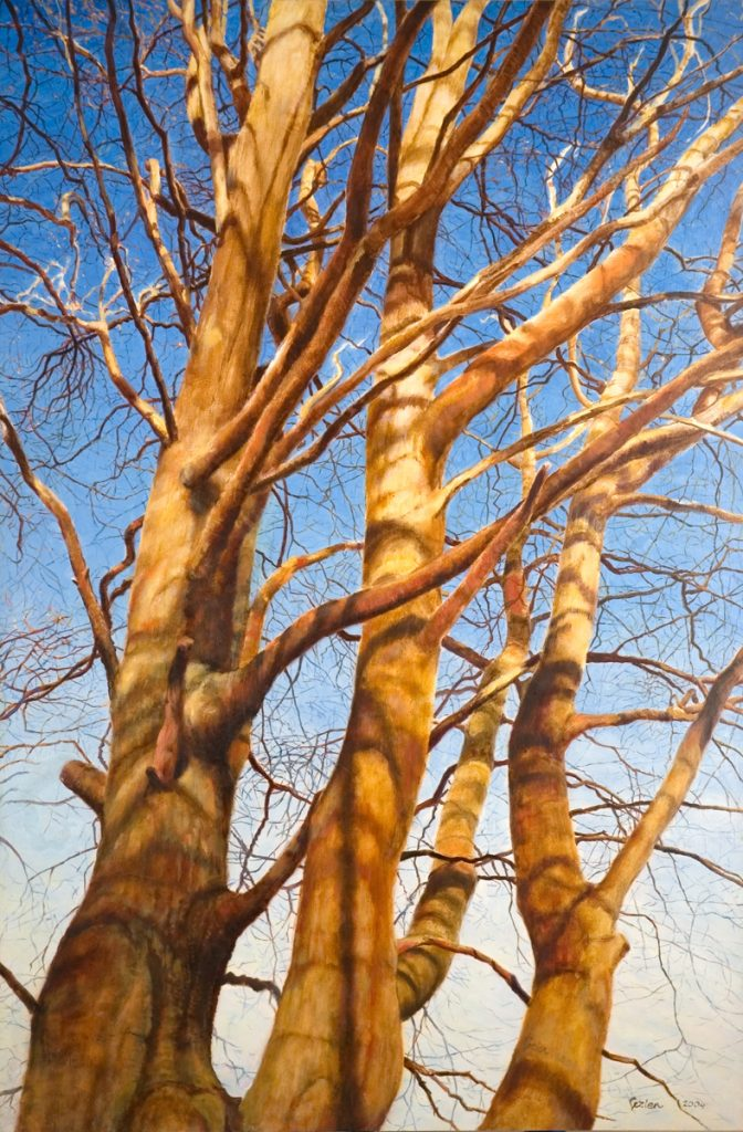 De beukenboom van Kijkuit 1 – alkyd/olieverf op paneel - 90x60cm
