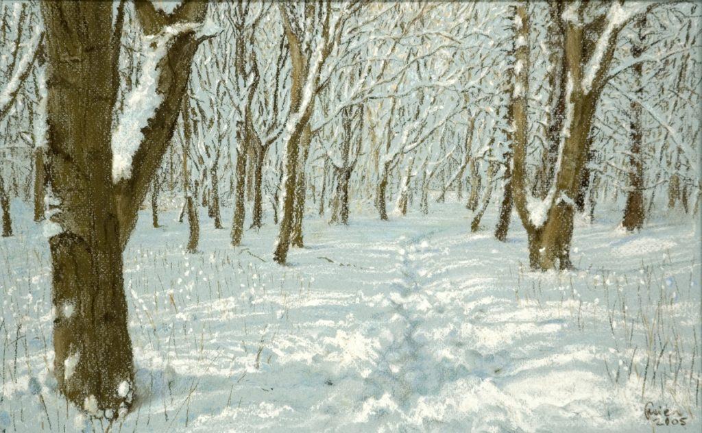 Sneeuw in het bos - pastel op papier - 23,5x37,5cm