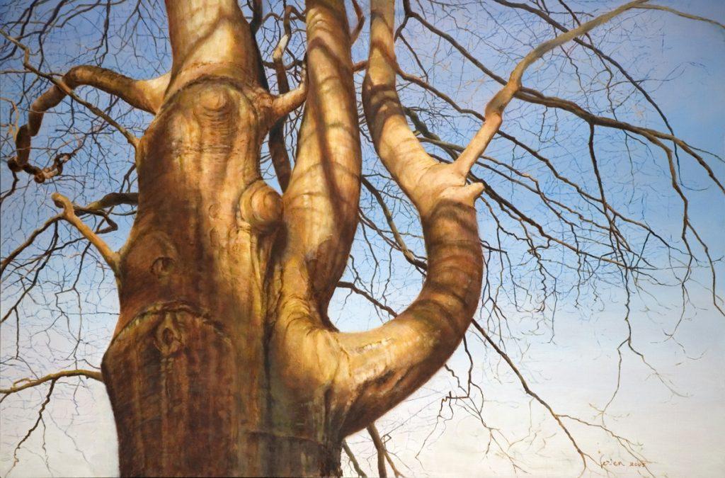 De beukenboom van Kijkuit 2 – alkyd/olieverf op paneel - 60x90cm