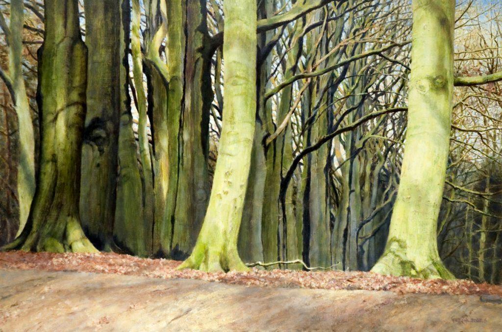 Beukenbomen aan de Holle Weg, Lochem - tempera/olieverf op paneel - 40x60cm