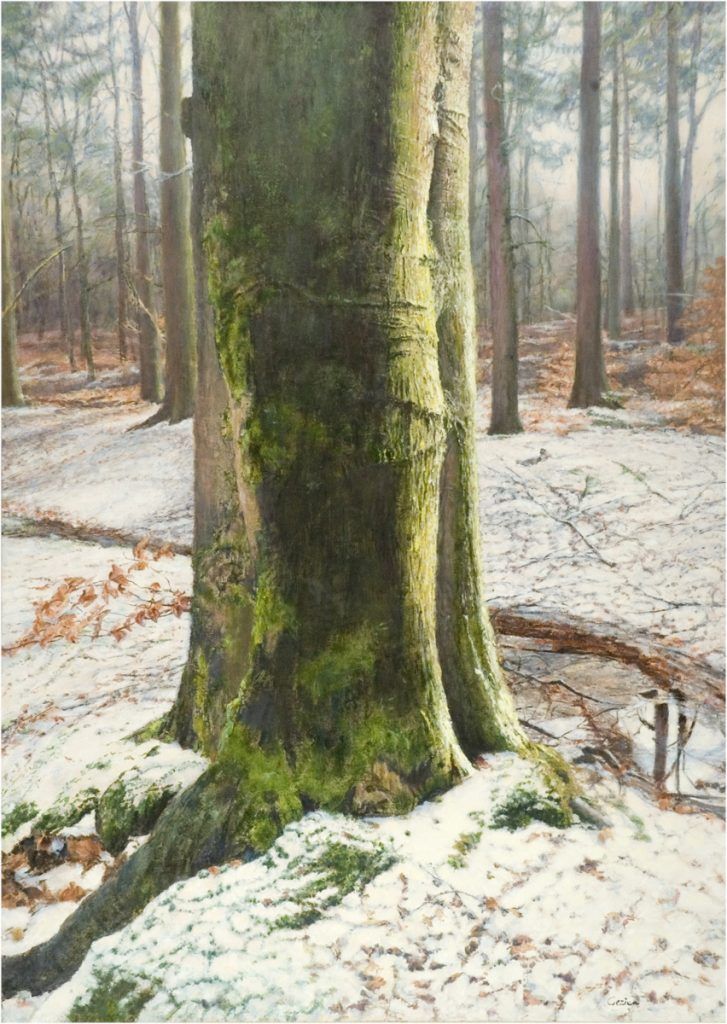 Sneeuw in het bos van Lochem - tempera/olieverf op paneel - 70x50cm
