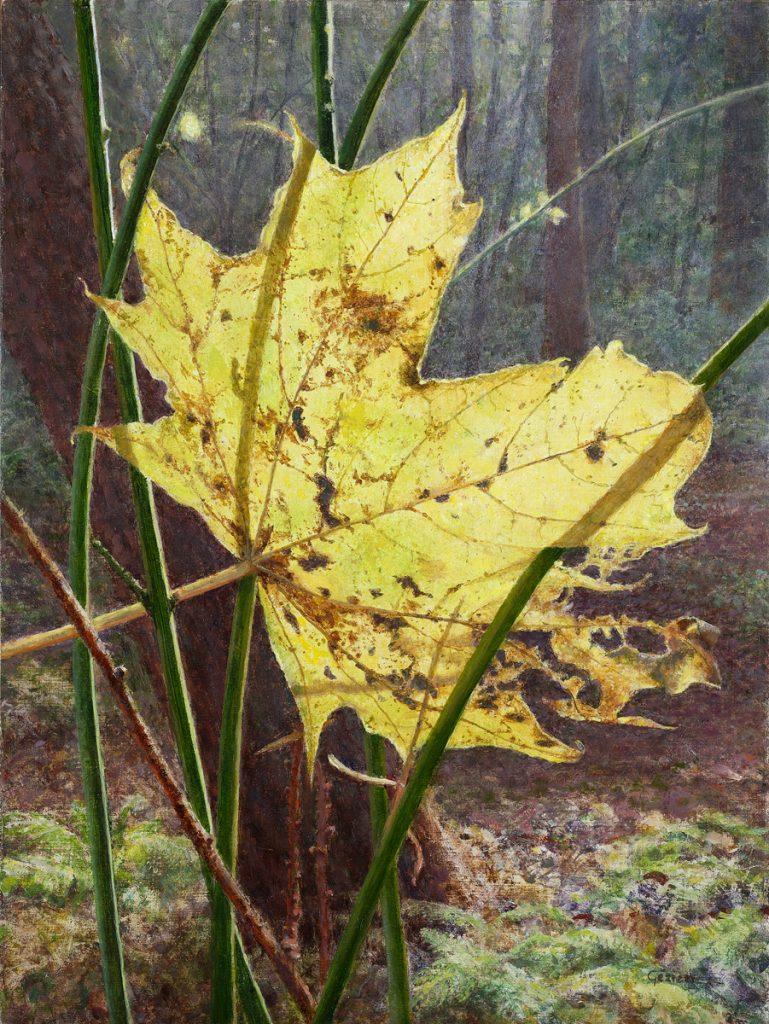 Lichtvanger in de herfst – tempera/olieverf op paneel - 40x30cm