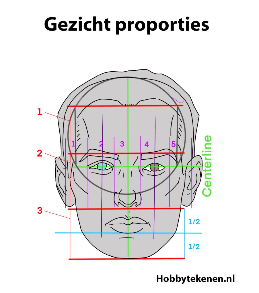 proporties van het gezicht